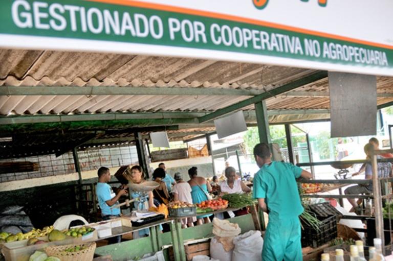 El raro experimento de las cooperativas en Cuba - Artículos - Cuba ...